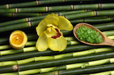 salt in wooden spoon with orchid and candle on bamboo grove