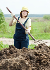 woman scatters the manure  in  field