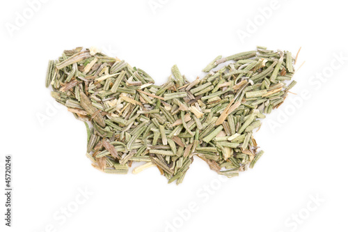 Rosemary (Rosmarinus officinalis) isolated in butterfly shape on