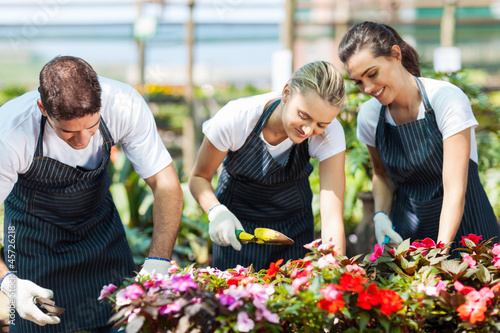 group of young gardeners working inside greenhouse
