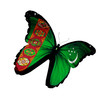 Turkmenistan flag butterfly flying, isolated on white background