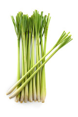 Lemon grass on white background