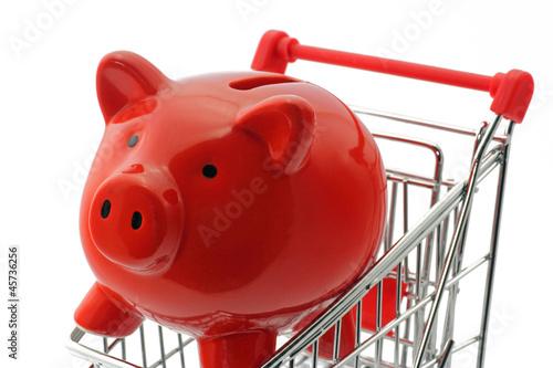 sparschwein mit einkaufswagen