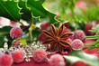 Weihnachtszeit ,Sternanis
