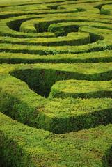 Spiral maze