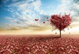 Fototapeta tło - piękny - Drzewo