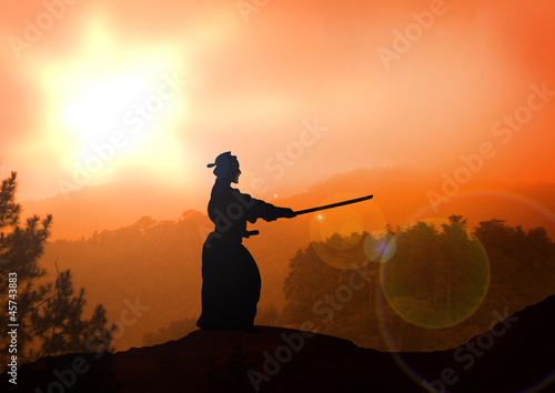 Stock Illustration of Kendo Training on Mountain