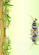 Fototapeten,bambus,gras,kieselstein,natur