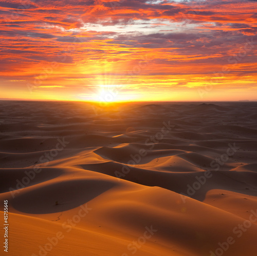 canvas print picture Desert on sunset