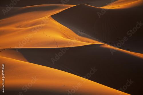 Leinwanddruck Bild Desert
