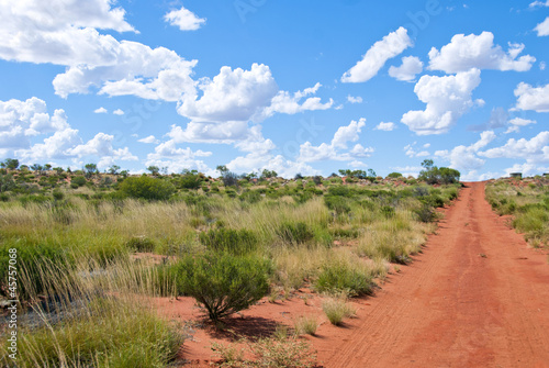 Unsealed road leading through Outback