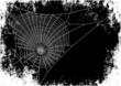 spiderweb background - 45759804