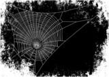 spiderweb background