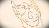 Human Skull structure animation illustration Shallow Depth of Fi