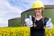 Biogas - alles Ok !
