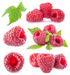 Raspberry isolated on white background