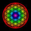 Regenbogen Schöpfungsmuster - Blume des Lebens - 45773251