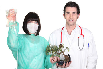 Medical team attaching a drip to a bonsai tree