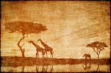 Safari in Africa drawing on ald paper