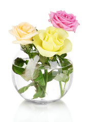 Beautiful roses in glass vase isolated on white