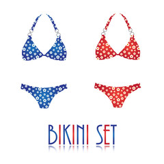 Collection of summer bikini in different colors