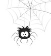 Funny Spider and Web