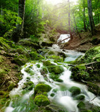 Fototapety forest waterfall