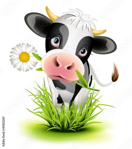 Foto op Canvas Boerderij Holstein cow in grass