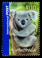 Australian Used Postage Stamp showing a Koala Bear, circa 2005.