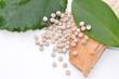 Biopolymer mit Holz und Blättern - 45823030