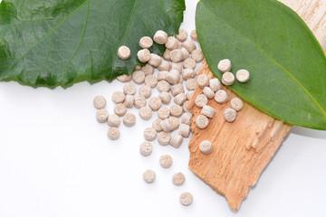 Biopolymer mit Holz und Blättern