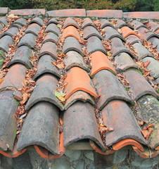 Rustico con foglie d'autunno sul tetto