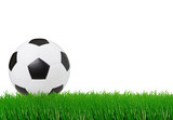 soccer football on green grass with white space background