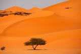 Fototapete Sand - Zeit - Sandwüste