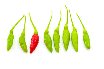 Red chilli among green chilli