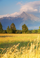 Symbol of Slovakia - Mount Krivan