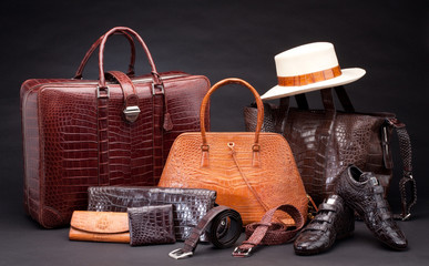 Set of crocodile leather products