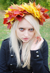The crown of autumn Leaves