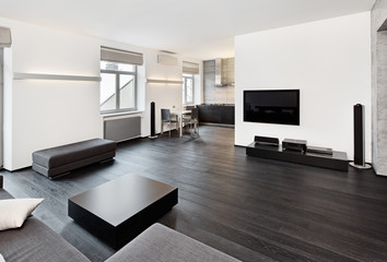 Modern minimalism style sitting room interior in black