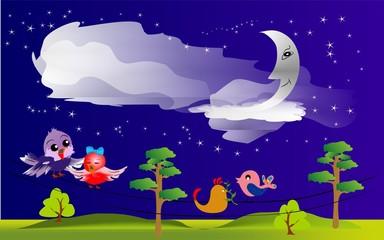 Noc ptaków,