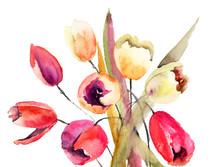 Tulipany kwiaty, malarstwo akwarela