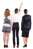 Back view of three beautiful young bussineswoman looking