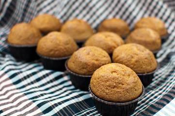 Spelt Cupcakes ecological