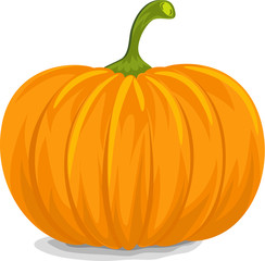 Yellow Pumpkin