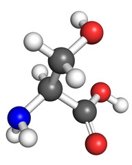 Serine molecule