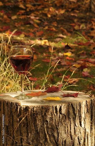 Red Wine On Red Pine Stump