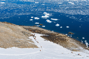 Group of tourists, view from the peak. Antarctica