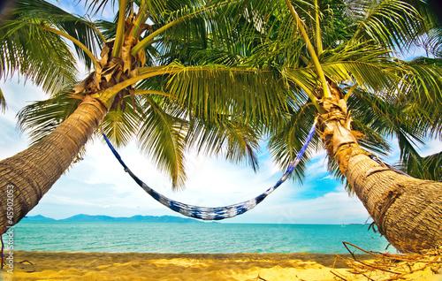 Relaks w hamaku pod palmami na wyspie Koh Samui