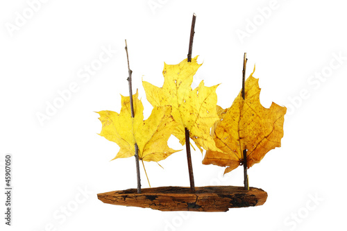 Sail ship hand craft toy - 45907050