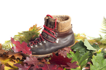 mountain boot on a autumn leaves carpet